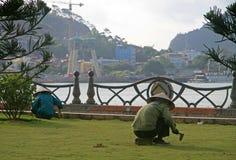 De straatarbeider trekt onkruid van het gazon uit royalty-vrije stock afbeelding