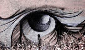 De straatkunst van de straatkunst, graffiti die menselijk oog, Maagdenburg afschilderen Stock Afbeelding