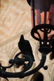 De straatlantaarn en de duif van Venetië stock afbeelding
