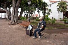 De straatmusicus speelt de harmonika, het verdienen geld, in het park in de stad van Icod DE las Vinos royalty-vrije stock foto's