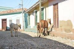 DE STRAATscène VAN CUBA TRINIDAD Royalty-vrije Stock Foto