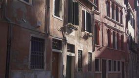 De straatvogels van Venetië stille achter kruising stock footage