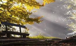 De stralen van de zon in de ochtendmist Royalty-vrije Stock Afbeelding