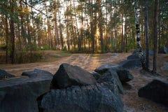De stralen van de zonsondergangzon ` s glanzen op de weg in het hout Royalty-vrije Stock Foto