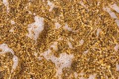 De stralen worden gebreken door de tegemoetkomende golf op strand stock fotografie