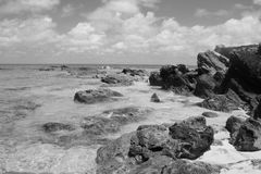 De strand geschotene Bermudas Royalty-vrije Stock Afbeeldingen