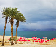 De strandluifels op een strand royalty-vrije stock afbeeldingen