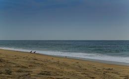 De strandscène zeurt binnen Hoofdnc-zonsopgang op een duidelijke blauwe dag Stock Fotografie