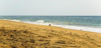 De strandscène zeurt binnen Hoofdnc-zonsopgang op een duidelijke blauwe dag Stock Afbeeldingen