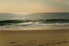 De strandscène zeurt binnen Hoofdnc-zonsopgang op een duidelijke blauwe dag Royalty-vrije Stock Foto
