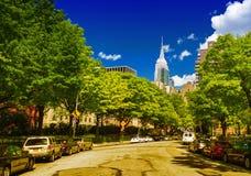 De straten van New York op een mooie de zomerdag met bomen en skyscr stock foto's