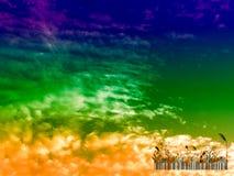 de streepjescode en de zonsondergang van het silhouetglas in de donkere hemel Stock Foto