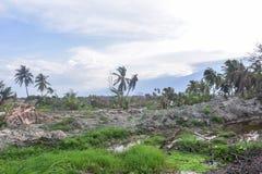 De Strengste Vloeibaarmaking Petobo Centrale Sulawesi van de Schadeaardbeving royalty-vrije stock foto's