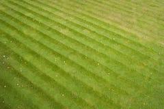 De strepen van het gras royalty-vrije stock fotografie