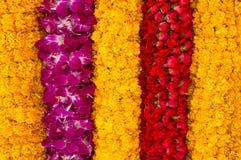 De strepenachtergrond van de bloem Stock Afbeeldingen