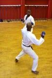 De strijd van de karate Royalty-vrije Stock Afbeeldingen