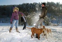 De strijd van de sneeuwbal Stock Foto