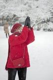 De strijd van de sneeuwbal Stock Fotografie