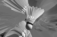 De Strijd van het badminton Stock Afbeeldingen