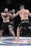 De strijd van Mmavechters bij de ring Stock Afbeeldingen