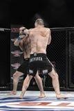 De strijd van Mmavechters bij de ring Royalty-vrije Stock Afbeelding