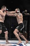 De strijd van Mmavechters bij de ring Royalty-vrije Stock Foto