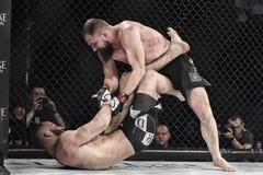 De strijd van Mmavechters bij de ring Royalty-vrije Stock Foto's