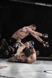 De strijd van Mmavechters bij de ring Stock Foto's