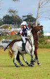 De strijd van Polocrosse voor de bal Royalty-vrije Stock Afbeeldingen