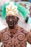 De strijder van Amazonië Royalty-vrije Stock Foto's