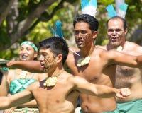 De Strijders van Maori Stock Fotografie