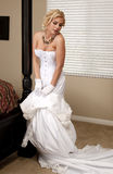 De Striptease van de bruid Stock Afbeeldingen