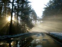 De Stroken van de zon door de Mist Stock Afbeeldingen
