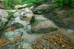 De stromen van de Bamniwaterval naast stenen in wildernis stock fotografie