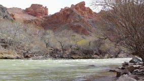 De stromen van de bergrivier onder de stenen op de achtergrond van rode rotsen stock footage