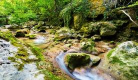 De stromen van de bergstroom op rotsbed Royalty-vrije Stock Foto's