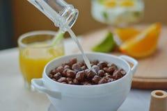 De stromende melk op de ballen van de graangewassenchocolade, chocolade schilfert, droog ontbijt, snelle brealfast af stock foto's
