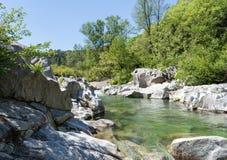 De stroom Ardeche van de landschapsrivier in de de zonnige rotsen en bomen van Cevennes Stock Foto's