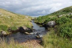 De stroom in Dartmoor legt vast Royalty-vrije Stock Foto's