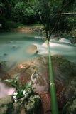 De stroom in het bos van Jad Kod, Thailand. Royalty-vrije Stock Foto's