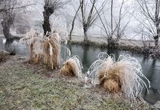 De stroom, met ijs en struiken op de kust wordt behandeld die royalty-vrije stock afbeelding