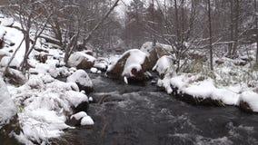 De stroom in Sneeuw behandelde Toneel stock footage