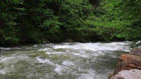 De stroom van Aude in Pyrenean, Frankrijk stock footage