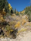 De Stroom van de berg in de herfst Stock Afbeeldingen