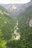 De stroom van bergen in Yosemite Stock Fotografie