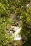 De stroom van bergen in Yosemite Royalty-vrije Stock Afbeeldingen