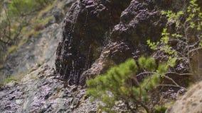 De Stroom van de berglente stock videobeelden