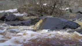 De stroom van de bergrivier in de lente stock videobeelden