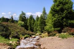De stroom van de berg Stock Afbeeldingen