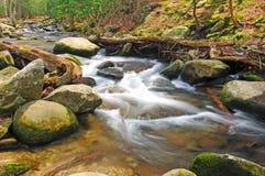 De stroom van de berg in de lente royalty-vrije stock foto